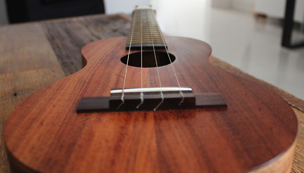 ukelele-close-up